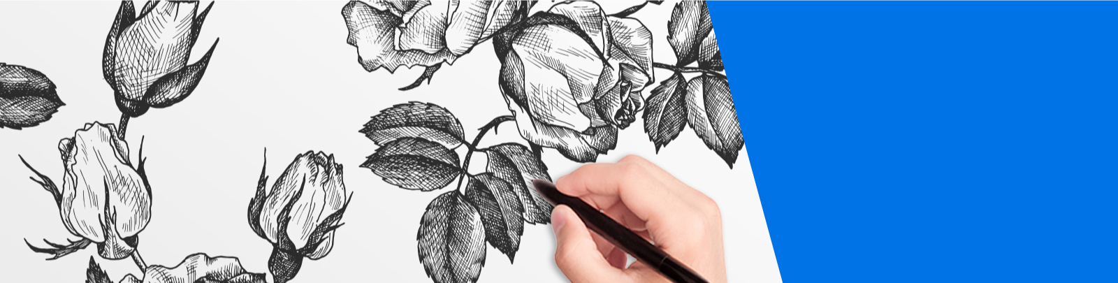 A hand drawing a pen and ink style image of flowers.